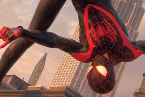 Spider Man Miles Morales Ps 5 Wallpaper