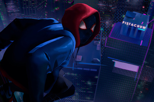Spider Man Milesnew Wallpaper
