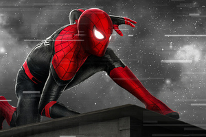 Spider Man Monochrome Artwork Wallpaper