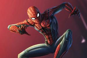 Spider Man New Design
