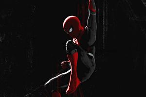 Spider Man Spider Web Art