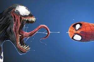 Spider Venom Funny 4k