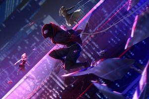 Spider Verse Universe 5k