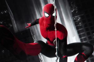 Spiderman 4k Monochrome New
