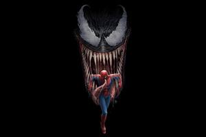 Spiderman And Venom Artwork