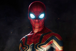 Spiderman Avengers Infinity War Suit