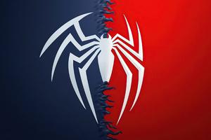 Spiderman Background 4k