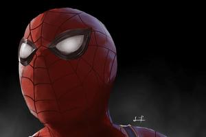 Spiderman Big Face