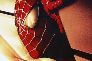 Spiderman Closeup Arts
