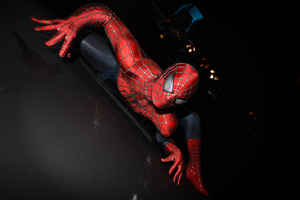 Spiderman Crawling On The Wall