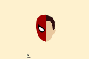 Spiderman Face Minimalism