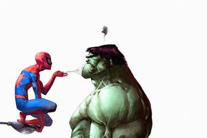 Spiderman Hulk Funny