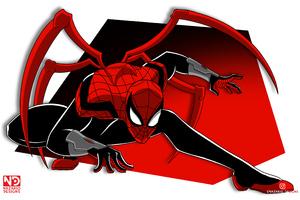 Spiderman In Spider Verse