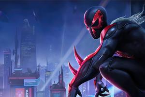 Spiderman Marvel Contest Of Champions 4k Wallpaper