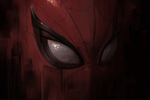 Spiderman Mask Closeup