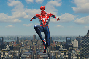 Spiderman New Yorker Wallpaper