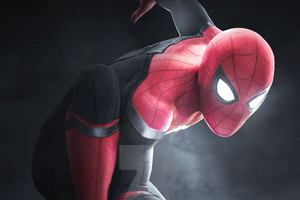 Spiderman Newart