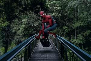 Spiderman On The Bridge