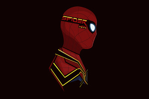 Spiderman Pop Head Shot Wallpaper