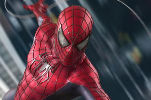 Spiderman The Web Crawler Wallpaper
