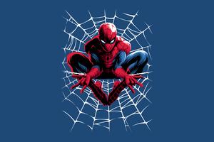 Spiderman Web Minimal 4k Wallpaper