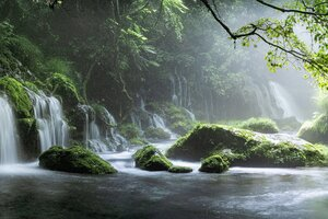 Spring Waterfall Stone Fog Mist Green Forest 8k