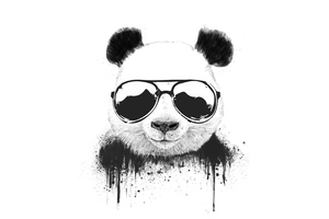 Stay Cool Panda Wallpaper