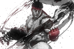 Street Fighter V Warrior
