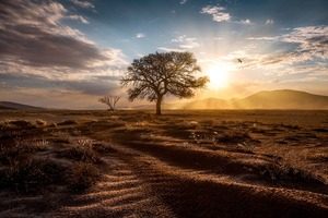 Sun Beams Landscape Wallpaper
