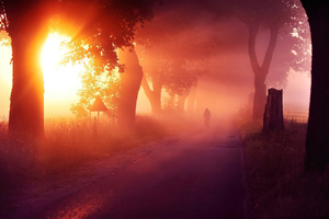Sun Rays Mist Road 4k Wallpaper