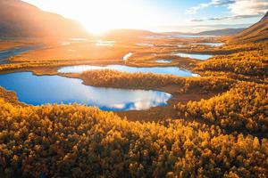 Sunrise In Swedish Lapland 4k