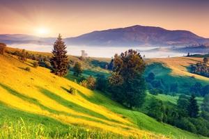 Sunrises And Sunsets Scenery Grass Hill 5k Wallpaper