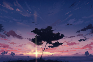 Sunset Sky Clouds Tree 4k Wallpaper