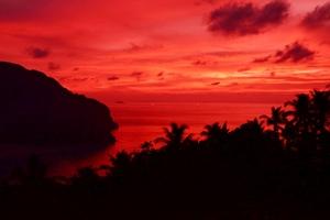 Sunset Sky Tree Dusk Landscape