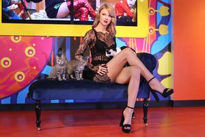 Taylor Swift 2018 5k