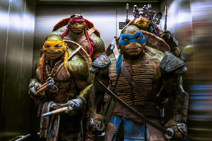 Teenage Mutant Ninja Turtles Out Of The Shadows 2016 Wallpaper