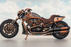 The Copper Rider