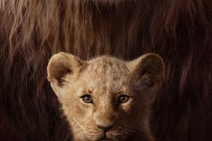 The Lion King Key Art 4k Wallpaper