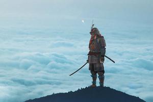 The Samurai Stood Still Wallpaper