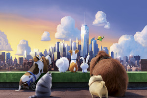The Secret Life Of Pets 10k Wallpaper