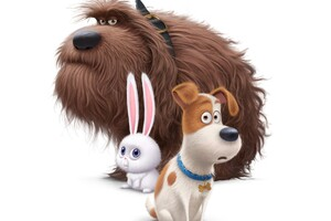 The Secrete Life of Pets Movie Dogs Wallpaper