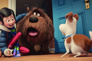 The Secrete Life of Pets Movie Original Wallpaper