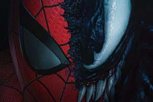 The Spiderman X Venom 4k Wallpaper