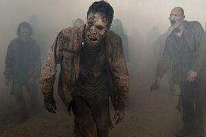 The Walking Dead Zombies Wallpaper