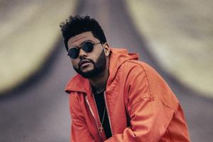 The Weeknd PUMA X XO 2018 Wallpaper