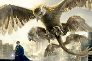 Thunderbird Fantastic Beasts And Where To Find Them Wallpaper