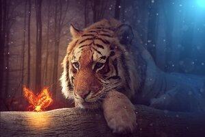 Tiger Dreamy Art