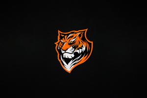 Tiger Minimal 5k Wallpaper