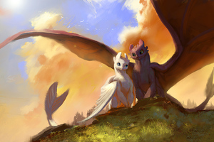 Toothless And Lightfury Fanart