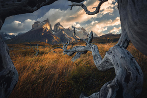 Torresdel Paine National Park Wallpaper